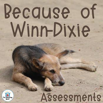Because of Winn-Dixie Assessment Packet