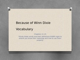 Because of Winn Dixie Chapters 11-15 Vocabulary PowerPoint