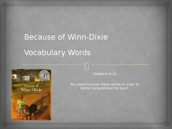 Because of Winn Dixie Chapters 6-10 Vocabulary PowerPoint