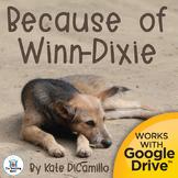 Because of Winn Dixie Novel Study Book Unit