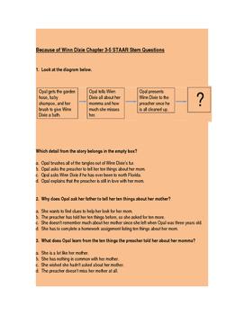 Because of Winn Dixie STAAR STEM Chapter Questions