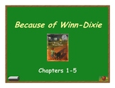 Because of Winn-Dixie Vocabulary