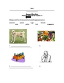 Because of Winn-Dixie Vocabulary Asessment for Chapter 1-6