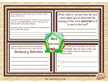 Because of Winn-Dixie Vocabulary Graphic Organizers Complete Set