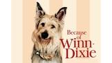 Because of Winn Dixie Vocabulary PowerPoint