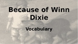 Because of Winn Dixie - Vocabulary Slideshow for All Chapters