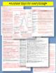 BECAUSE OF WINN-DIXIE NOVEL STUDY LITERATURE GUIDE FLIP BOOK