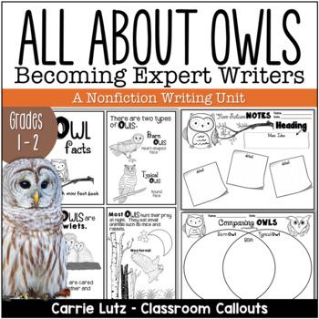 Nonfiction ~ An Owl Mini Unit  (Becoming an Expert)