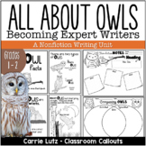All About Owls Non-fiction Writing Unit