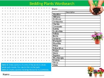 Bedding Plants Wordsearch Sheet Starter Activity Keywords Botany Gardening