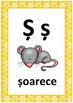 Bee Alphabet Posters in Romanian, Alfabetul cu Albine in Limba Romana