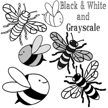 Bee Clip Art by Draw and Paint with Tammy   Teachers Pay ...
