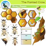 Bee Clip Art - Insect Life Cycle - Bugs - Color & Blackline