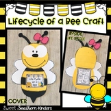 Bee Craft: Life Cycle of a Bee Craft: Spring Crafts