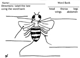 Bee Labeling