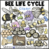 Bee Life Cycle Clip Art  Whimsy Workshop Teaching