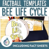 Bee Life Cycle Factball and Comprehension Sheet