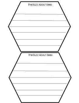 Bee Life Cycle Honeycomb Craft