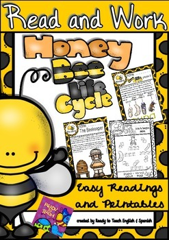 Bee Life Cycle - Read and work - Science Center