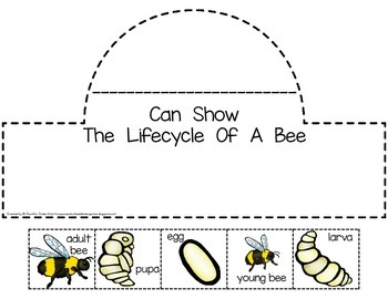 Bee Lifecycle Crown