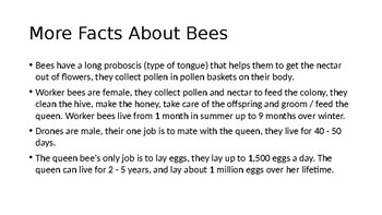 Bee Powerpoint