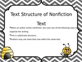 Bee Theme Text Structure Posters