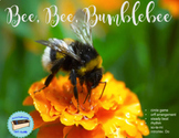 Bee, Bee, Bumble Bee
