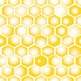 Bee and Honeycomb Backgrounds