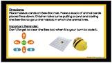 Bee-bot Coding Animal Habitats