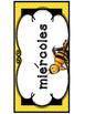 Bee dias y meses