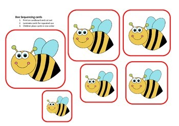 Bee size seriation