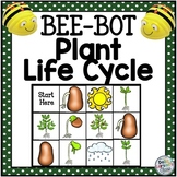 BeeBot Life Cycle of the Plant