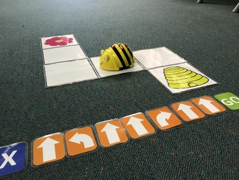 BeeBot Maze with Coding cards