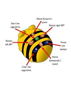 Beebot Display Diagram