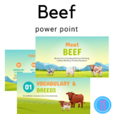 Beef Power Point and handouts FCS