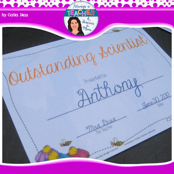 Beehive Classroom Decor Theme - Student Awards with EDITABLE text fields