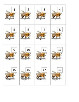 Beehive Fact Families