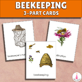 Bee Beekeeping Montessori 3-part Cards