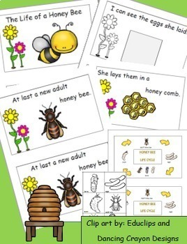 Bees Life Cycle, Math and Literacy, Science, Bee Themed Activities Bundle