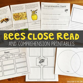 Bees Close Read | Bees Lifecycle