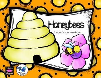 Bees: Life Cycle & Anatomy