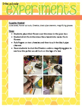 Bees/Pollination-Informational/opinion writing, Craftivity & STEAM activities