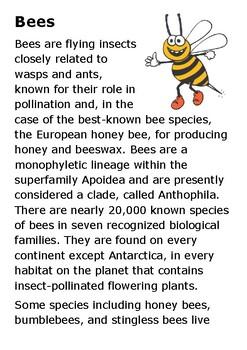 Bees Handout