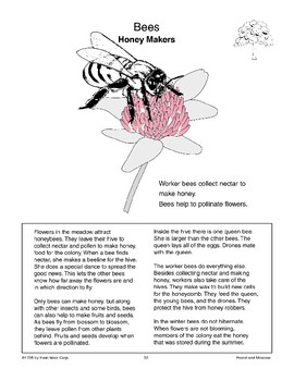 Bees: Honey Makers