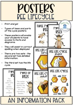 Bee Life Cycle Activities and Worksheets