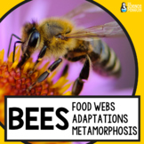 Bees Life Science Unit