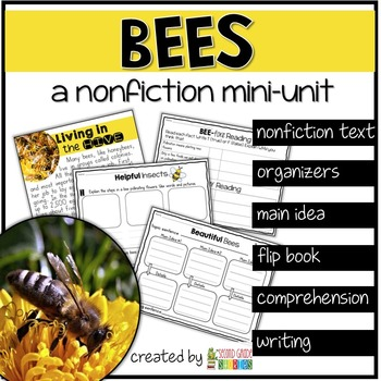 Bees Nonfiction Reading