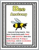 Bees Life Cycle - Bees Unit - Bees Science - Bees Literacy