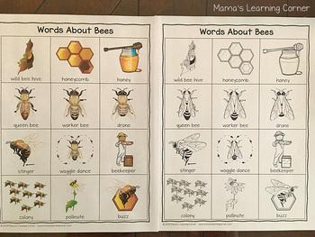 Bees Writing Activity