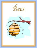 Bees Thematic Unit